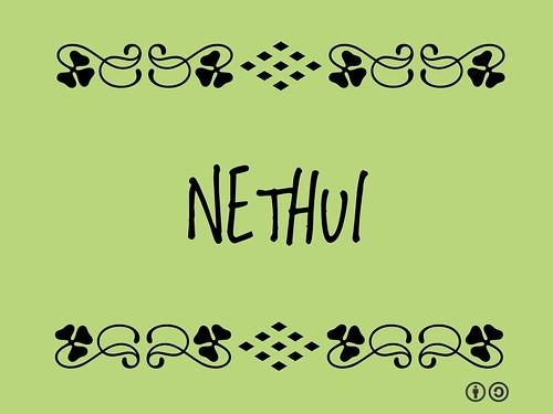 #NetHui