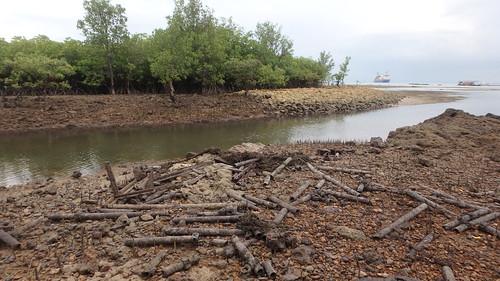 Large trash dumped at Pulau Semakau