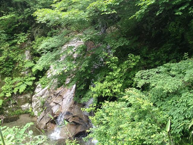 貝月山 長者平ルート 滝