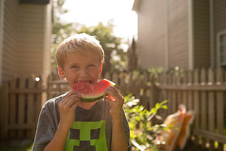 watermelon in backyard-blog | by -kimcunningham