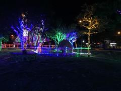 100 - Parque illuminiert 02 - Bayahibe
