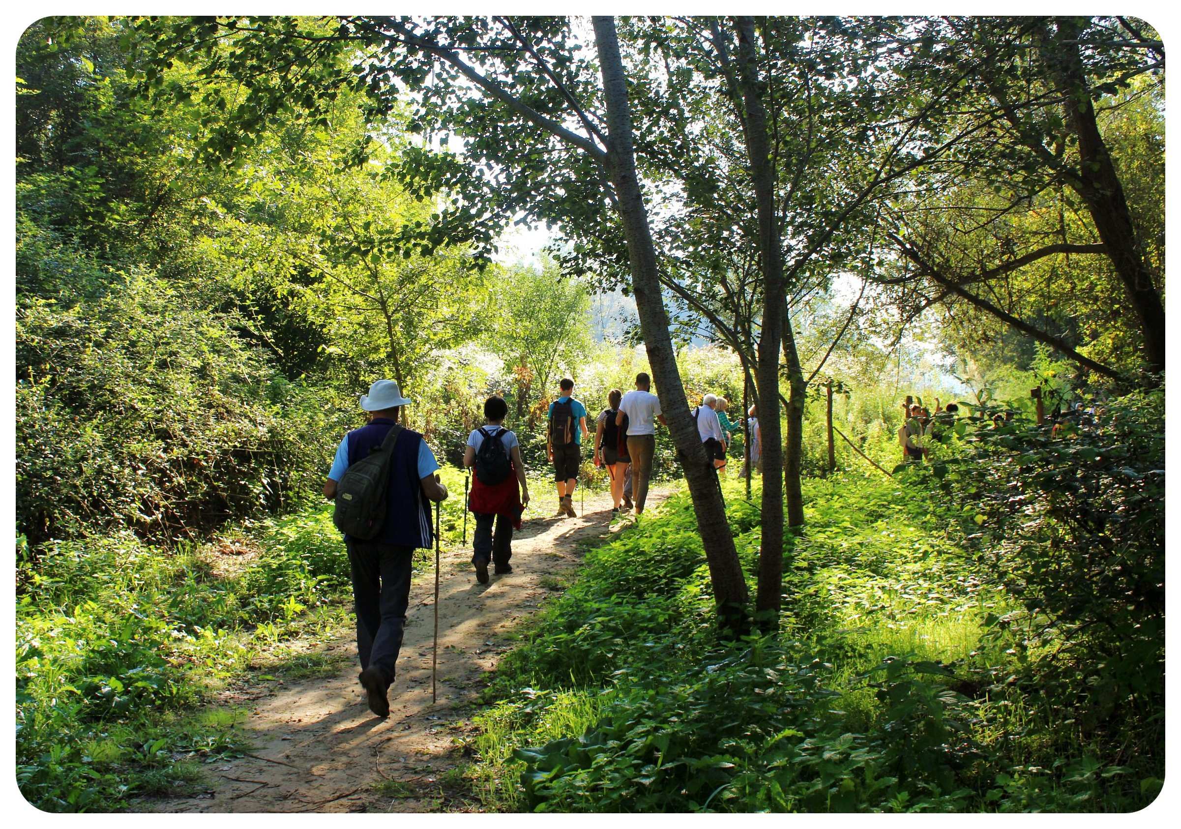 via francigena hikers