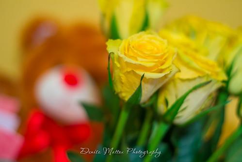 046/365 : Valentine's gifts