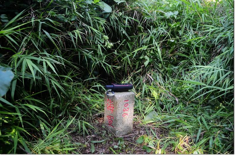 槺榔埔山海軍三角點(#1036 Elev. 185 m) 1