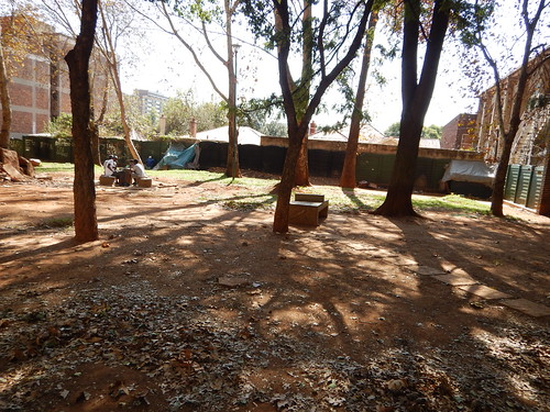 Public Park in Hillbrow