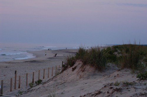 Beach and Sand Dunes at Assateague State Park