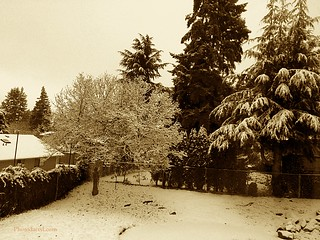 20161209-snowday02