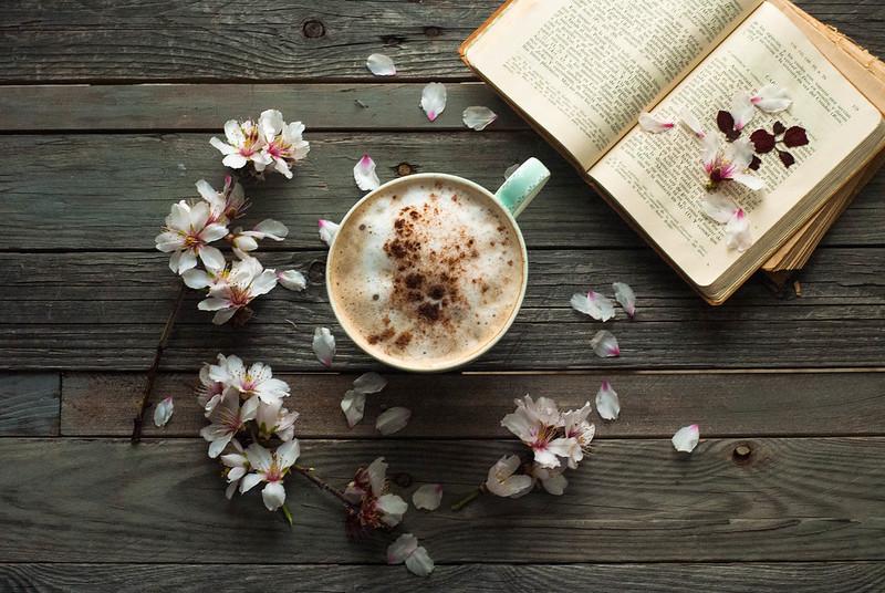 CÓMO HACER EL CAFÉ PERFECTO: PLACERES para el FIN de SEMANA