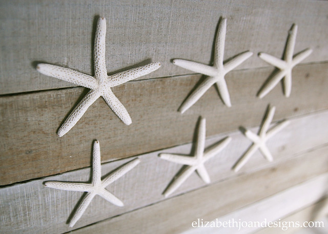 Starfish Pallet Coastal