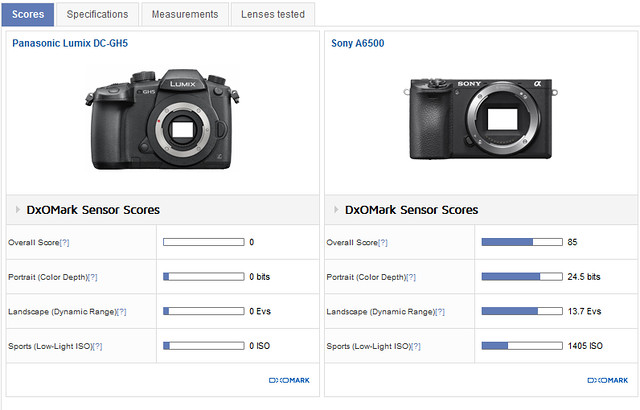 https://www.dxomark.com/Cameras/Compare/Side-by-side/Panasonic-Lumix-DC-GH5-versus-Sony-A6500___1149_1127
