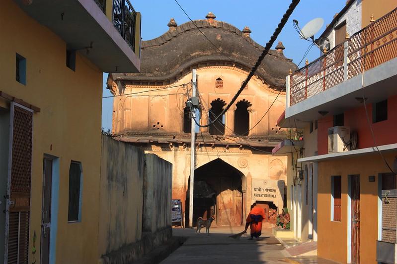Орча Индия