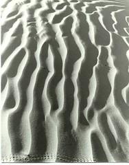 Death Valley sand dune ripples 431-5--Oct 1981