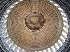 Inside the Capitol | by Will Palmer
