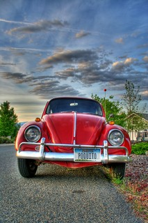 Beetle Bug Long HDR | by TylerKnott