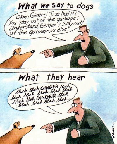 Larson: what dogs hear | This is too good a piece to miss ...