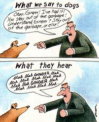 Larson: what dogs hear | by Mick Fealty