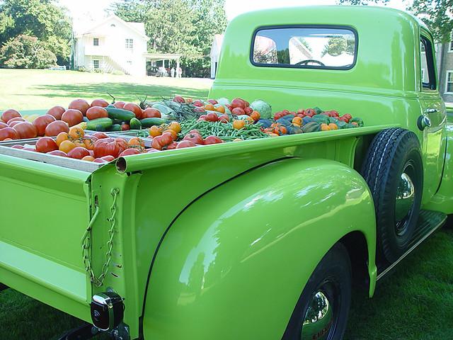 Food Truck Sales Statistics