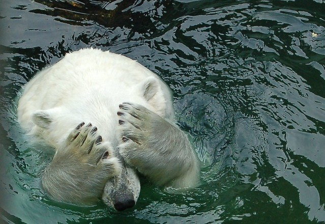 I'm so ashamed of this new manicure! | ;p (Title courtesy Ti… | Flickr