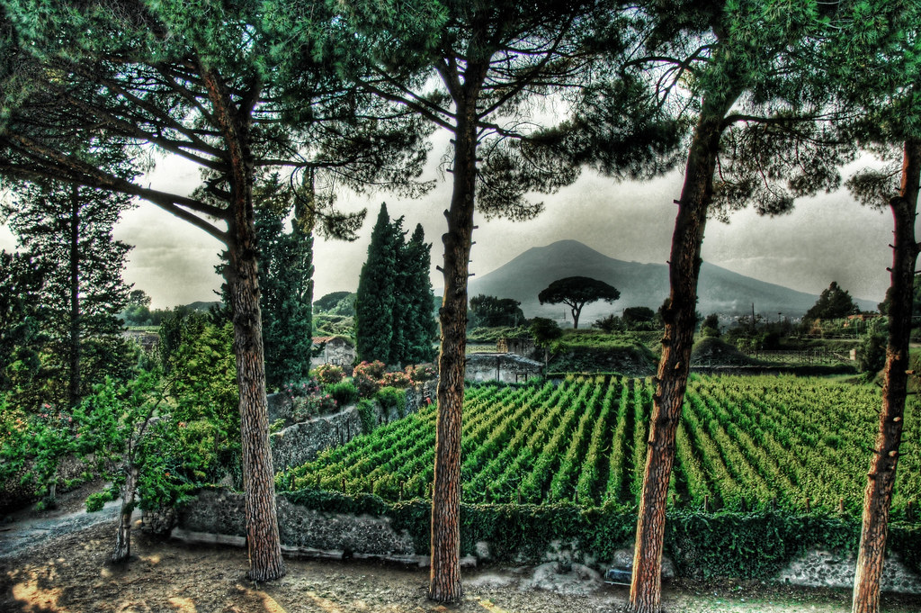 Pompeii Fertile Garden under the Shadow of Vesuvius   Flickr
