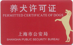 Shanghai Permitted Certificate of Dogs | by Dan Washburn