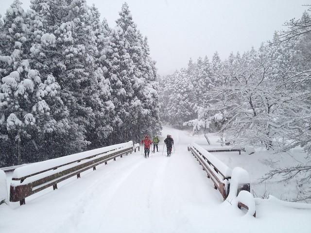 綿向山 御幸橋駐車場への道
