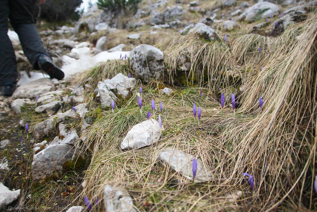 Montenegro [21]: National Park Durmitor
