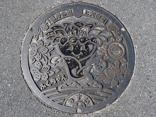 Kamiyahagi Gifu, manhole cover (岐阜県上矢作町のマンホール)