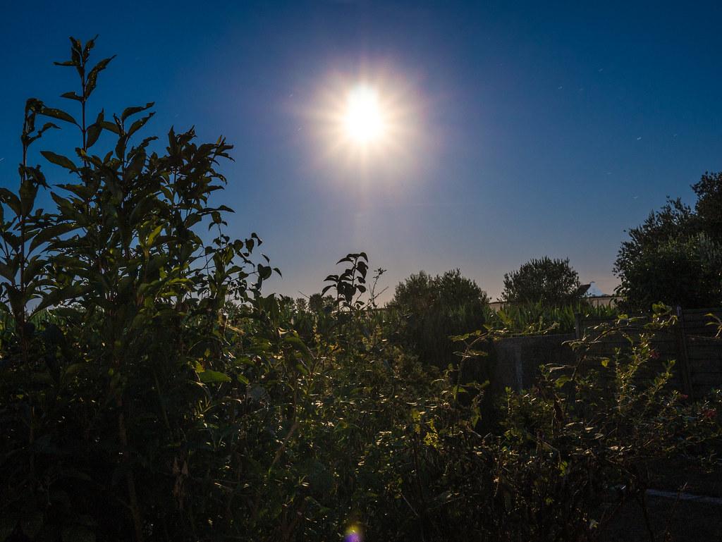 Eclats de lune lune bleue 30 juillet 2015 blue moon for Jardin lune juillet 2015