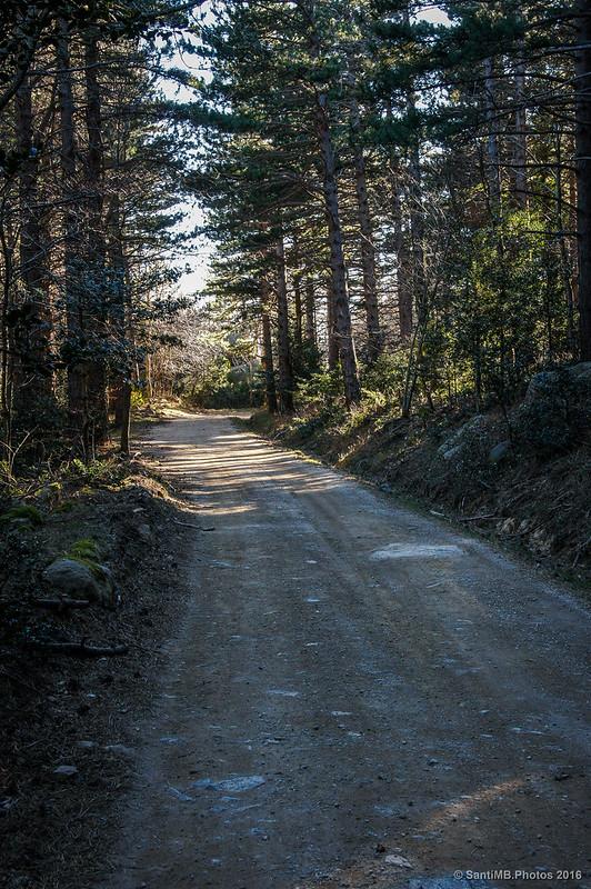 Camino de Maçanet a Les Salines