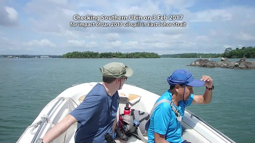 Checking Southern Ubin, 3 Feb 2017