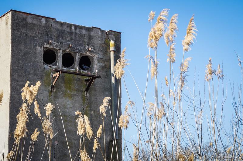 Una estación transformadora abandonada en la Carretera de la Vidala