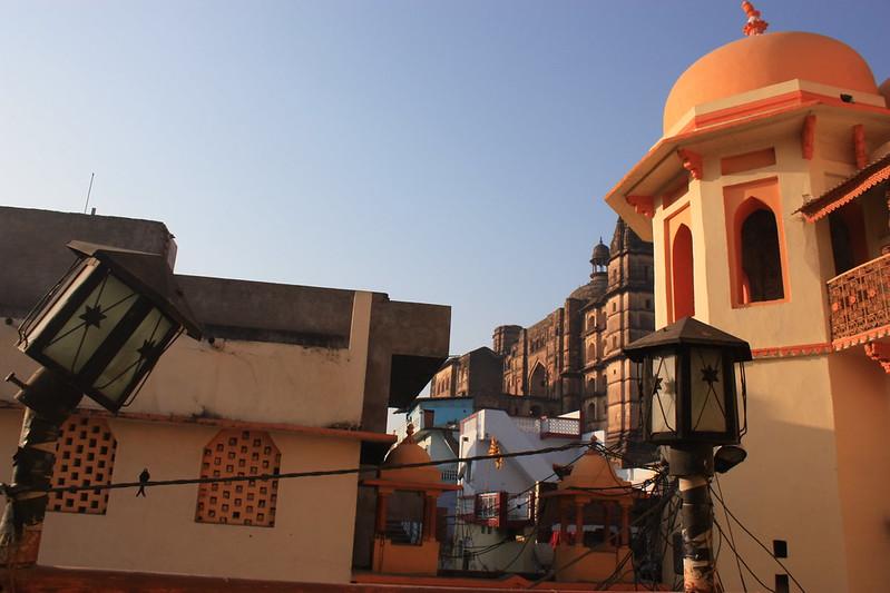 Индия Орча