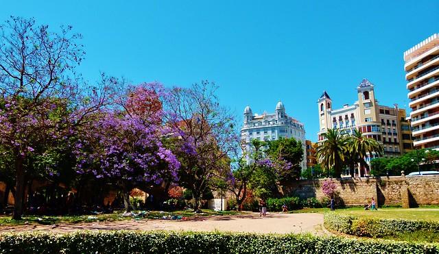 Сады Турия. Paseando por el Parque del Turía de Valencia