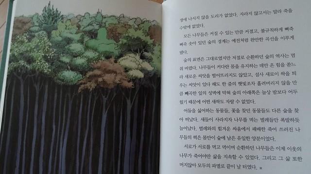지금은 없는 이야기-숲
