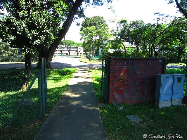 Westlake Primary School 01