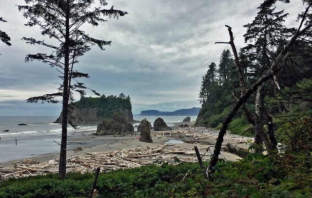 Initial view of Ruby Beach