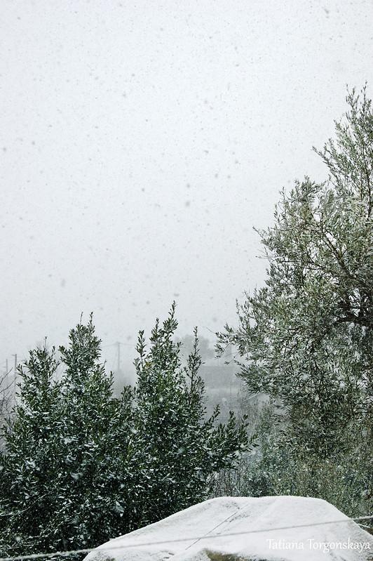 Снегопад в пригороде