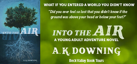 Check Out Into the Air by A. K. Downing