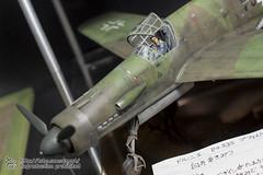 3_FB_PMC_E-62