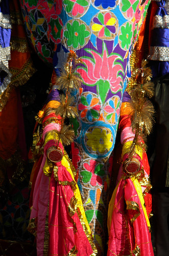 Jaipur Elephant Festival: Decorated elephant