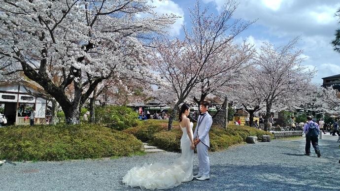 13 京都 嵐山渡月橋 賞櫻 櫻花 Saga Par 五色霜淇淋 彩色霜淇淋