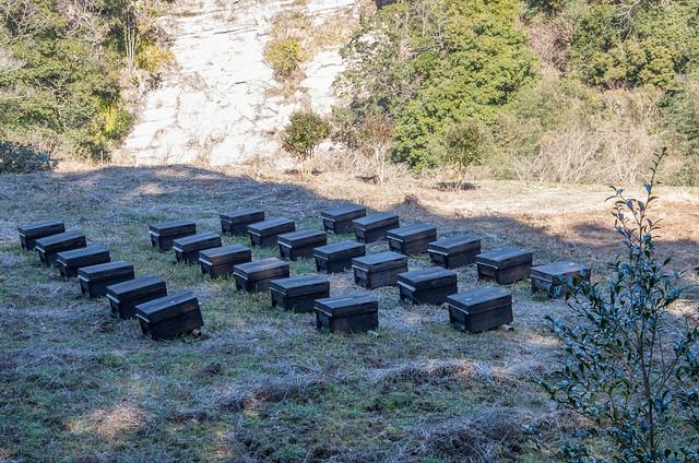 百鉾(もふく)の養蜂箱