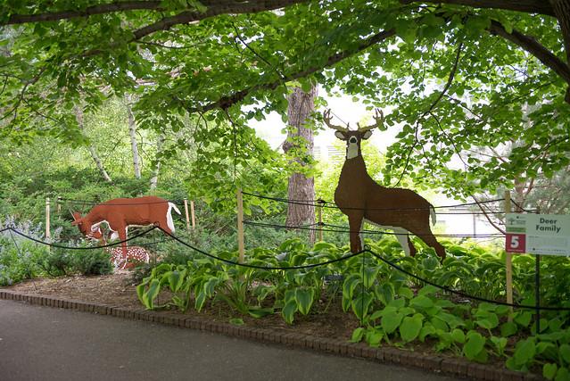 arboretum fridayeve-25