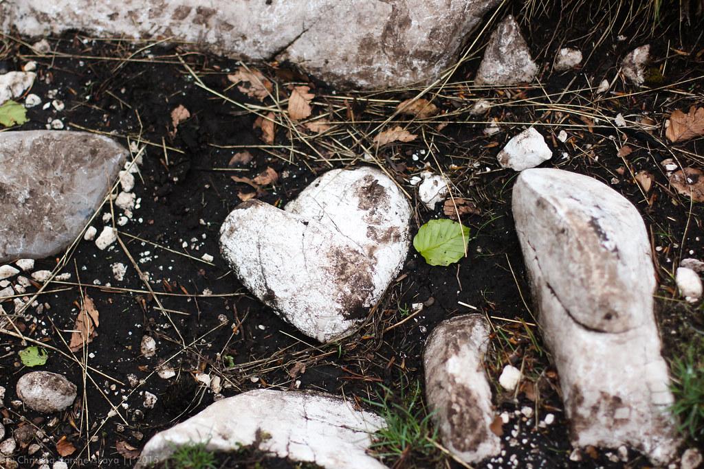 Montenegro [32]: National Park Durmitor