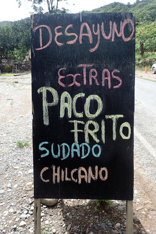 """Paco frito"" (pescado típico de la selva)."