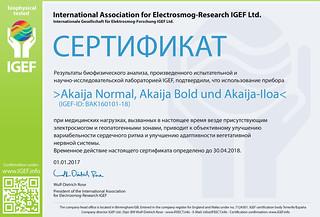 IGEF-Zertifikat-BAK-RU