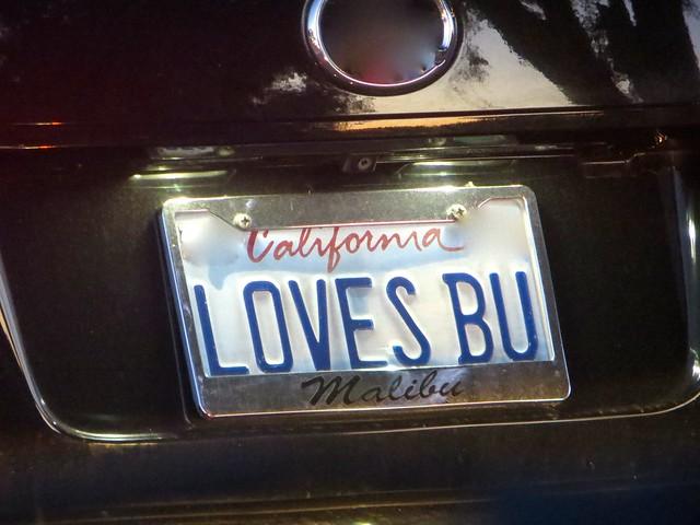 'bu plate love