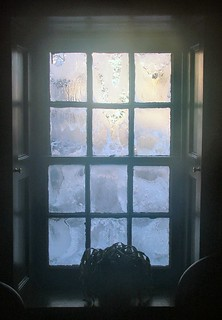 Frosty Window | by ccgd