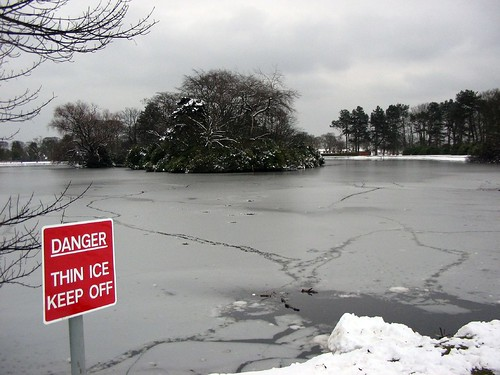 Beveridge Park Pond Thin Ice | by treefell