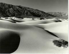 Death Valley Sand Dunes.